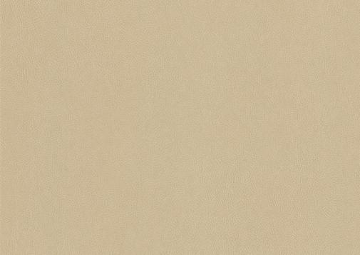Selbstklebende Folie NE42 - Caramel leather
