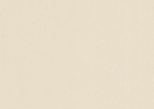 Selbstklebende Folie NE43 - Light cream leather