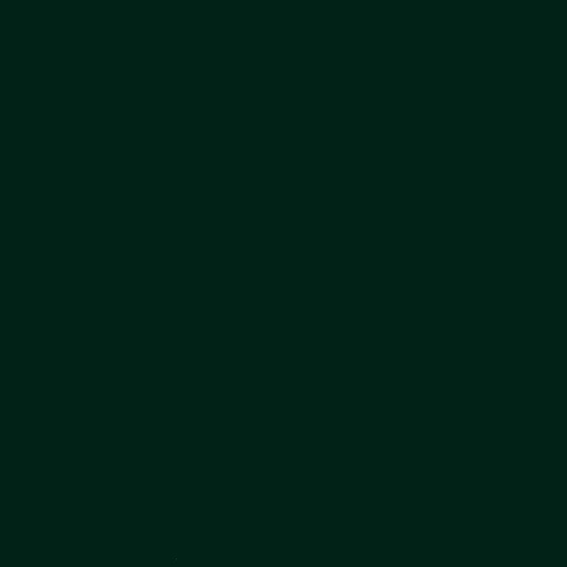 NF13 SOFT WINTER GREEN